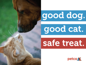 Petco First Pet Specialty Retailer to Remove China-made Dog and Cat Treats from Stores