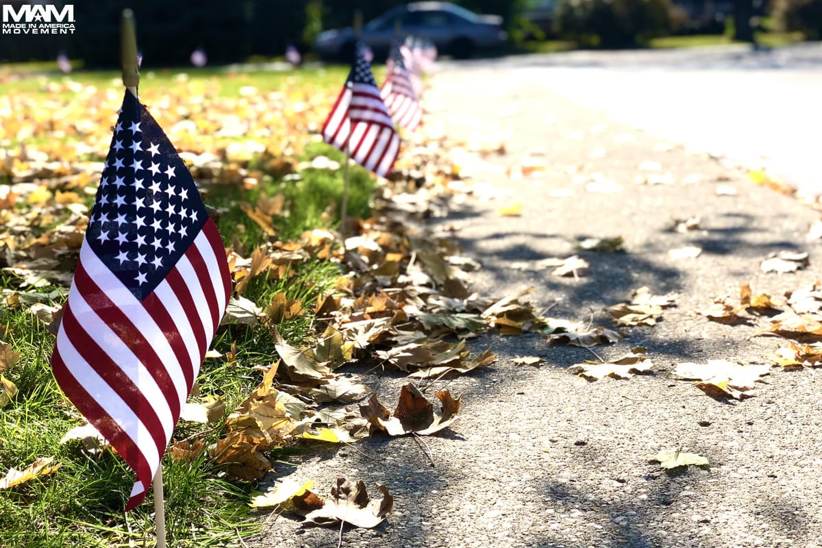 united-states-of-america-flags-along-street